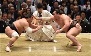 """""""打到要死""""的日本相扑,凭什么吸引年轻人?!"""